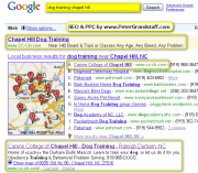 Dominating Search Engine Results - Chapel Hill